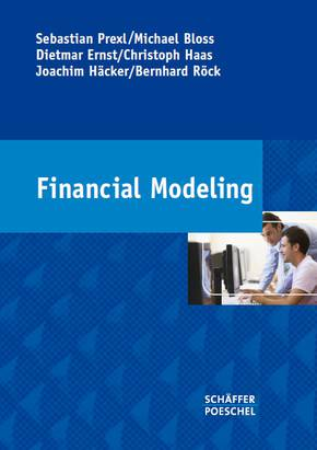 "Buch ""Financial Modeling"""